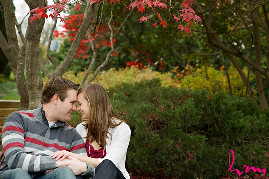 toronto couple engagement sitting under a red tree giggling