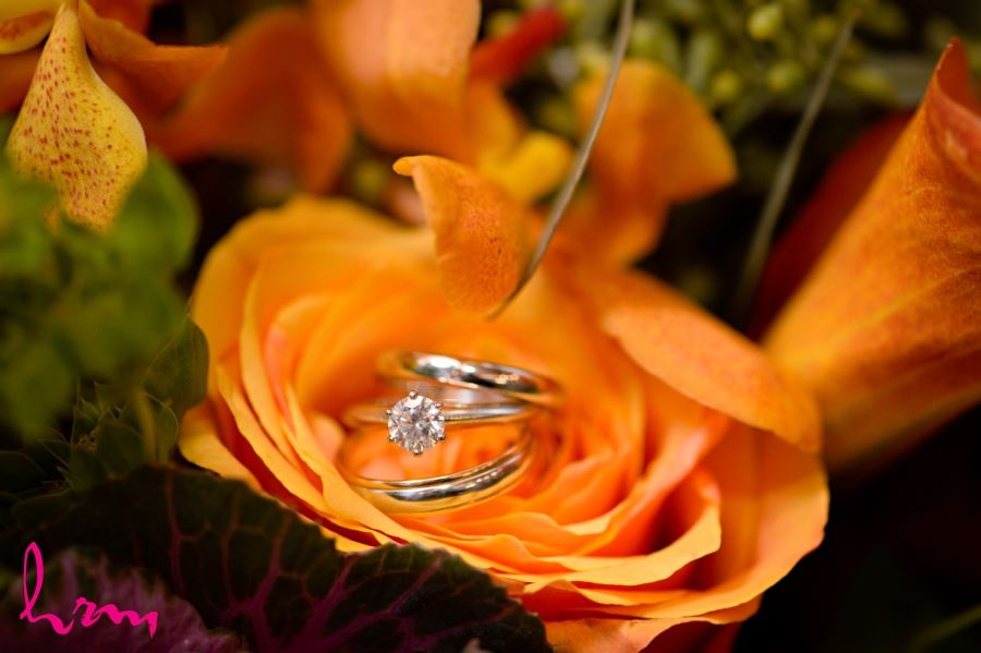 wedding ring shot on orange rose