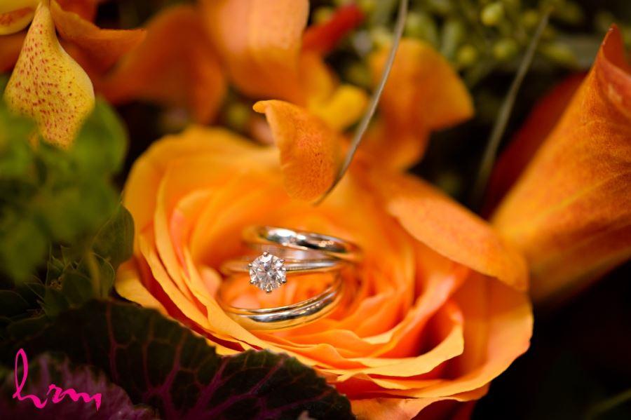 wedding ring shot on orange rose