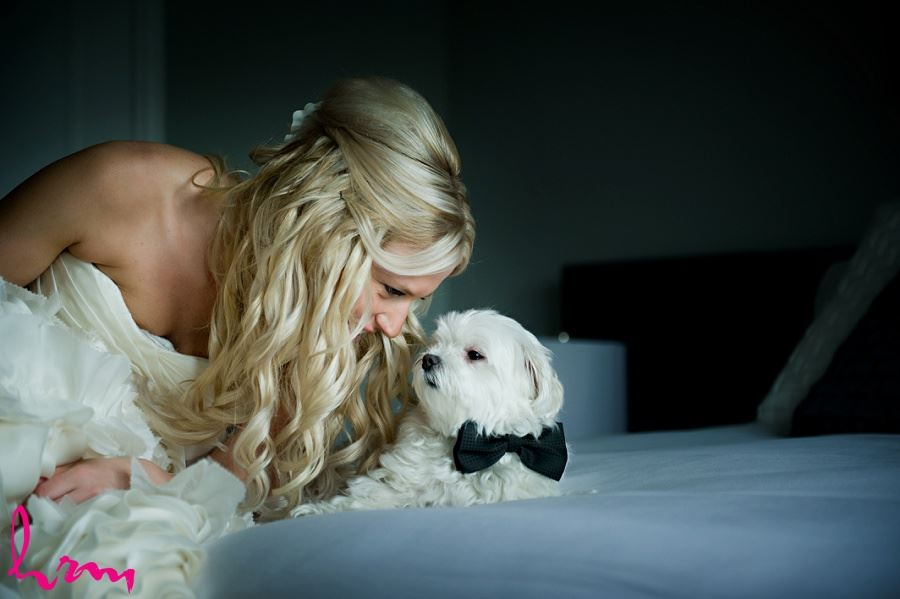 Wedding photo of bride in dress with dog