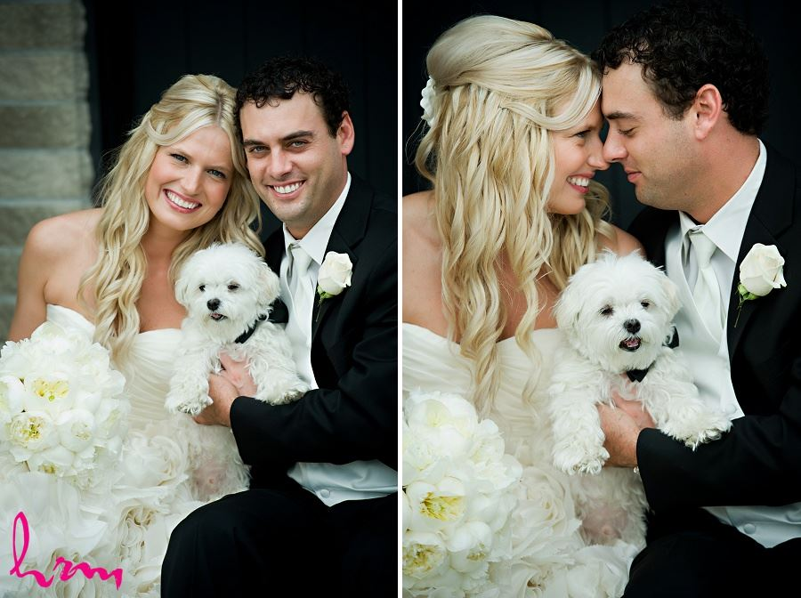 Wedding photo of bridge and groom with dog