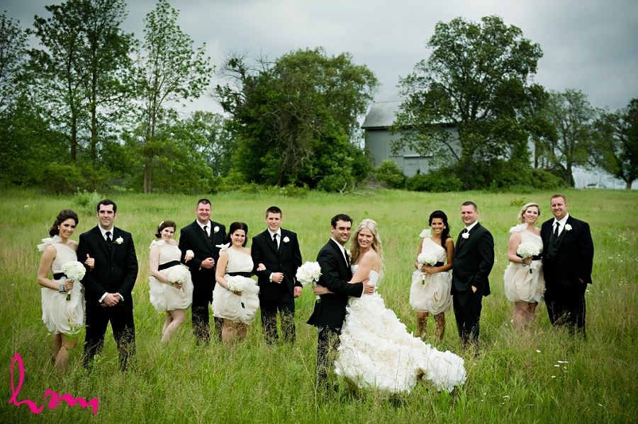 Wedding photo of wedding party in a field
