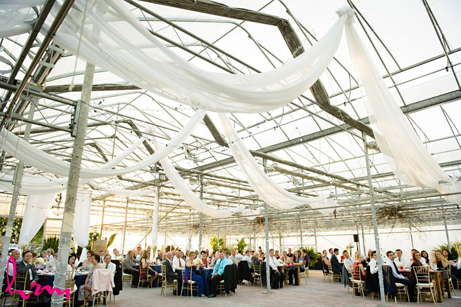 Dinner at Heeman Greenhouses London ON Wedding Photography