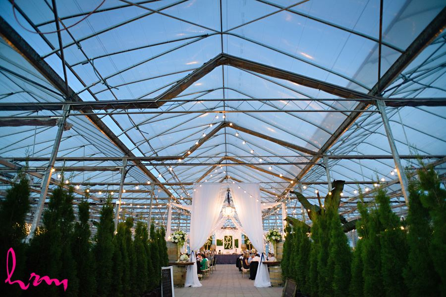 Lights in Heeman Greenhouses London ON Wedding Photography