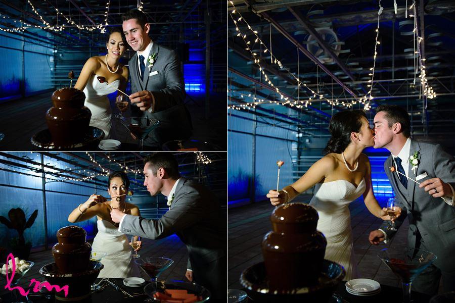 Chocolate fountain Heeman Greenhouses London ON Wedding HRM Photography
