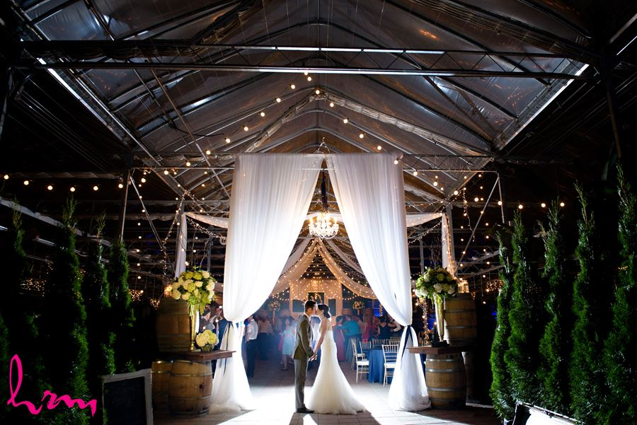 Geneviève and Will kiss under lights Heeman Greenhouses London ON Wedding Photography