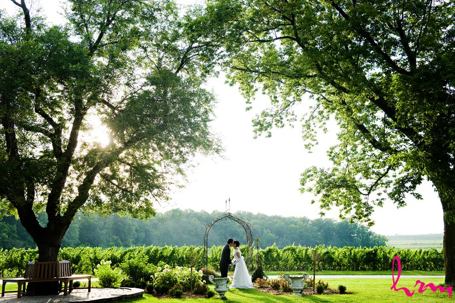 Hrm Photography Blog Mari Ichiro Vineland Estates Winery Wedding