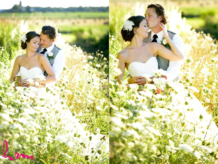 Leigh and Pete in field Purple Hill Country Farms London ON Wedding Photography