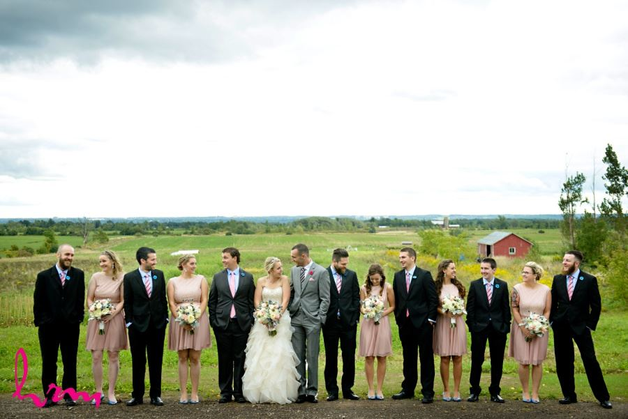 Wedding party in pink and blue colours