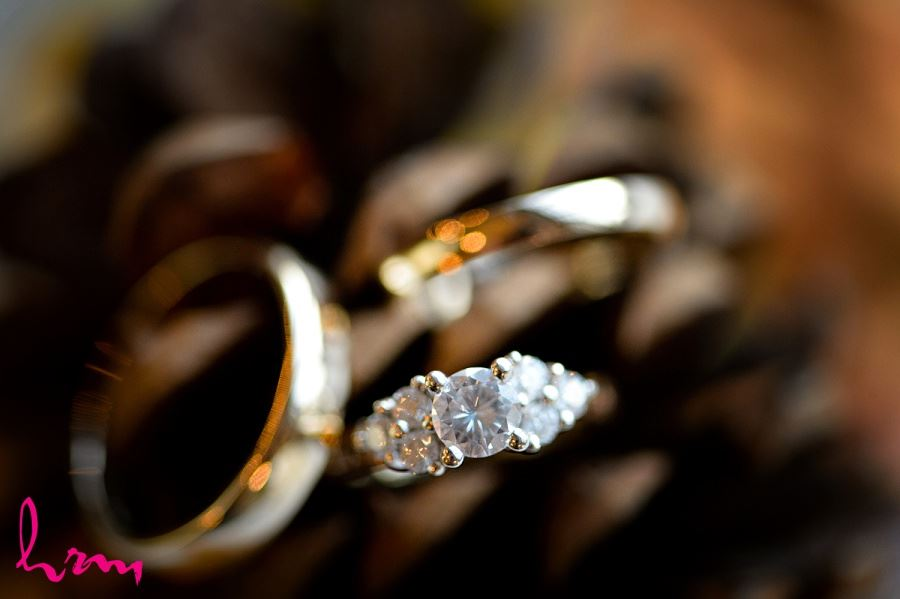Wedding rings Windermere Manor London ON Wedding Photography
